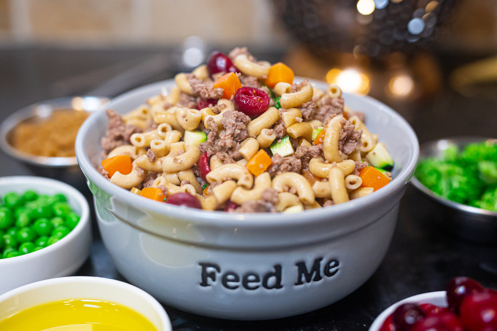 Roasted Turkey & Whole Wheat Macaroni