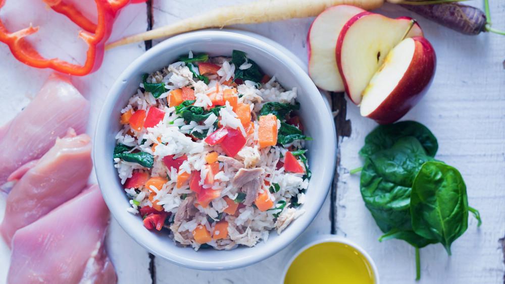 Free Range Chicken & White Rice
