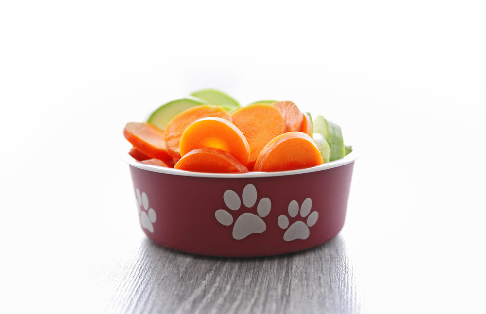 10 Healthy Dog Food Ingredients