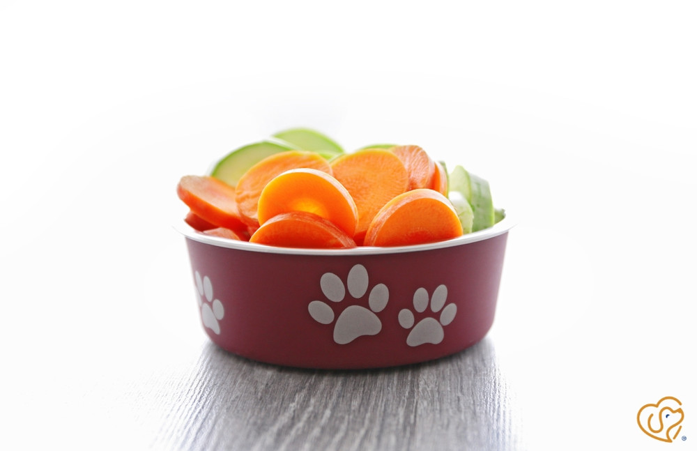 ​10 Healthy Dog Food Ingredients