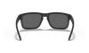 Oakley SI Holbrook Sunglasses with Matte Black Tonal USA Flag Frame and Grey Lens OO9102-E555 Inside View