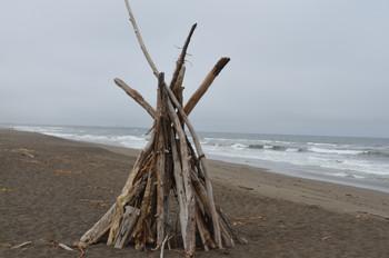 Beach Art - #97