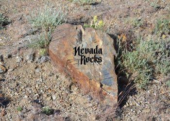 Nevada Rock - #198