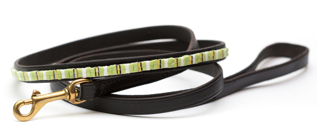 Lemon Lime Pet Leash