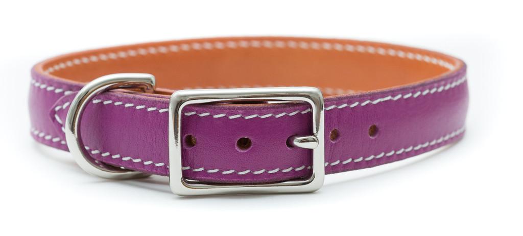 Prestige Purple Pet Collar