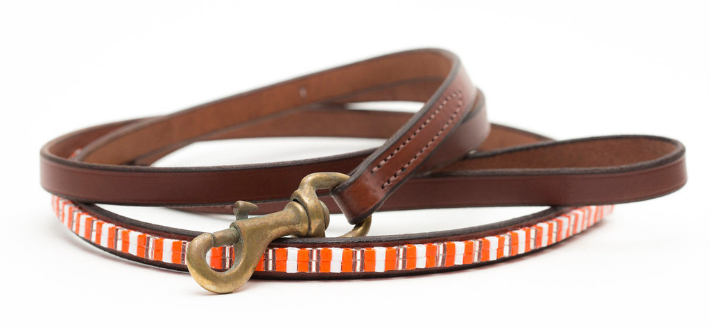 Creamsicle Pet Leash