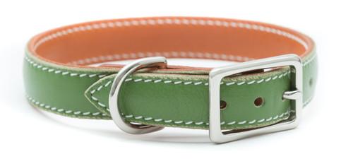 Prestige Green Pet Collar