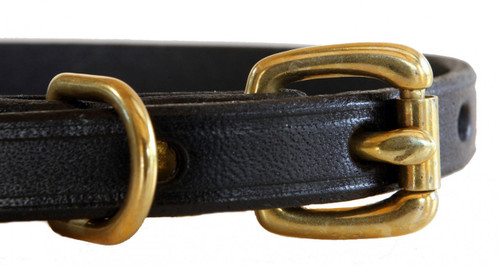 closeup of brass hardware with black leather collar