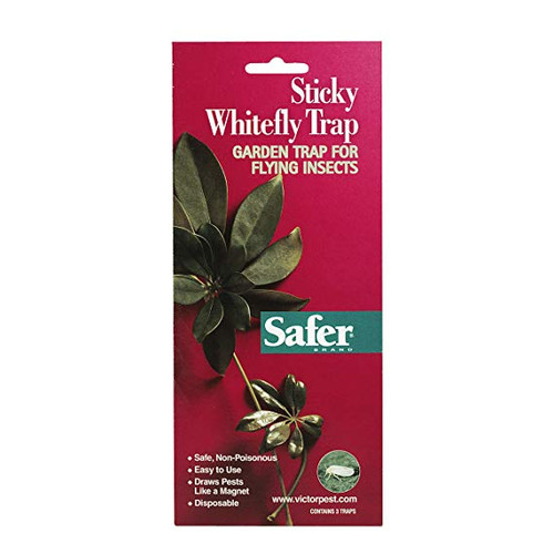 Safer Brand Sticky Whitefly Traps