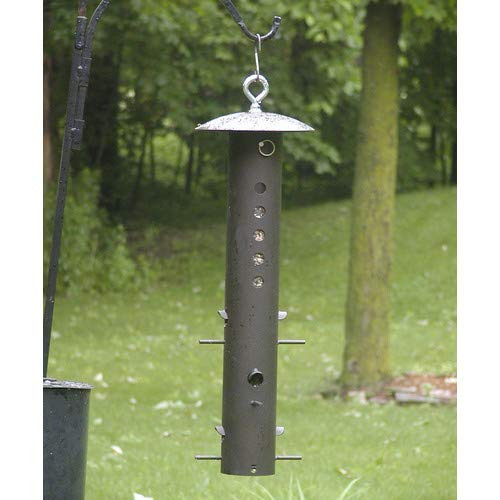 Birds Choice Bear Proof Feeder