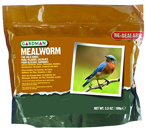 Mealworm Tub Small, 3.5 oz.