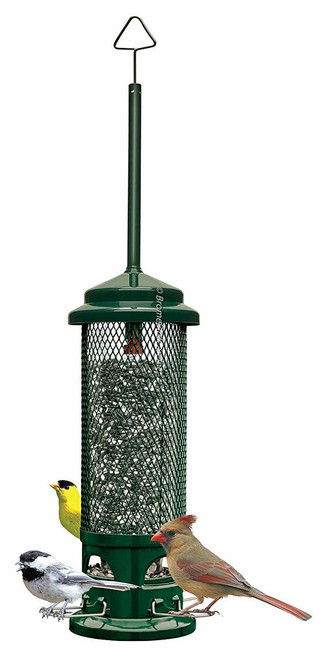 Squirrel Buster Legacy Wild Bird Feeder