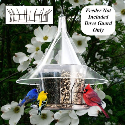 Dove Guard For Sky Cafe Feeder