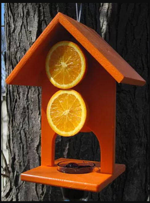 Urban Nature Store Double Fruit Oriole Feeder