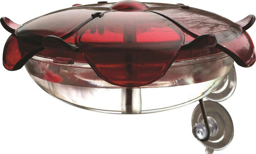 Ruby Sipper Clear Window Hummingbird Feeder