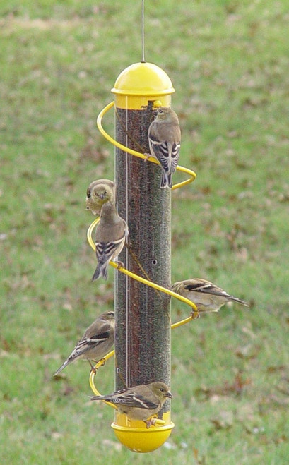 17 Inch Yellow Spiral Finch Tube Feeder