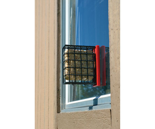 Red Suet Window Feeder