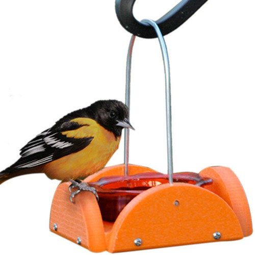 Going Green Oriole Feeder