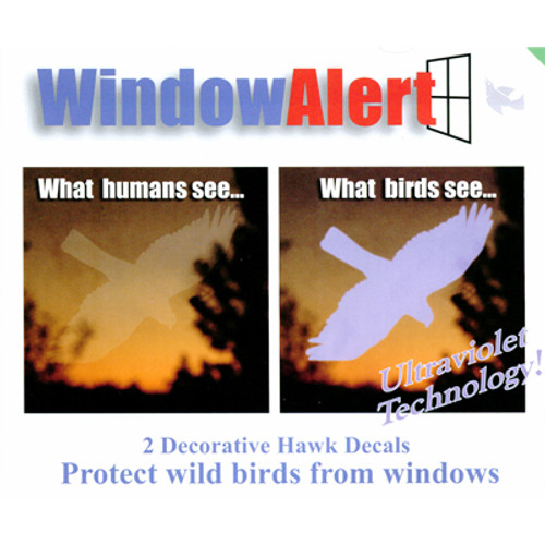 Window Alert Window Hawk Decal, 2PK