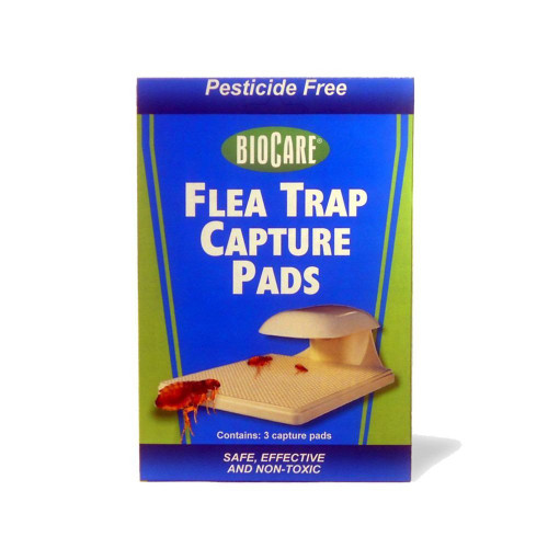 Flea Trap Replacement Capture Pads