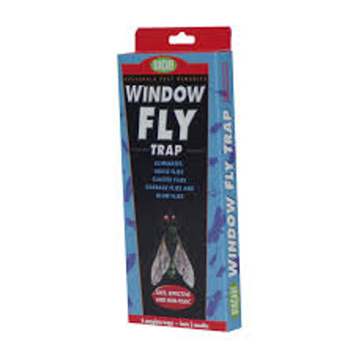 BioCare Window Fly Trap, 4PK