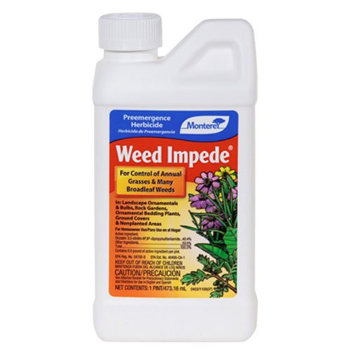 Weed Impede (Surflan), 1 Pint Concentrate