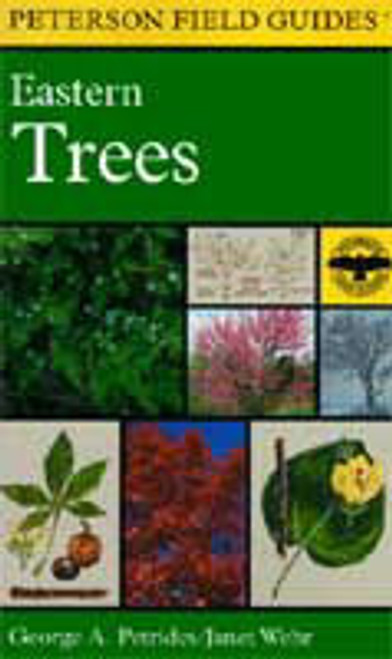 Peterson Field Guide To Eastern Trees