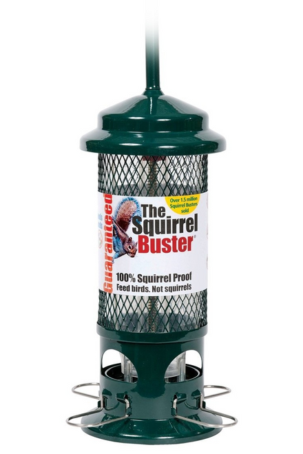 Squirrel Buster Standard