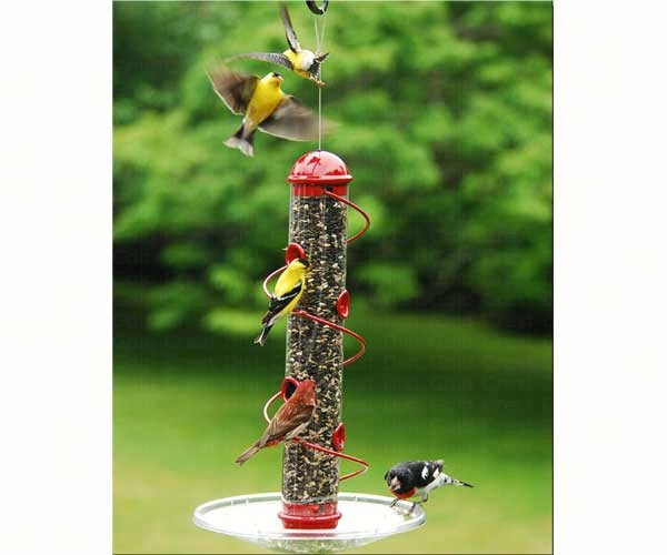17in. Red Spiral Sunflower Feeder