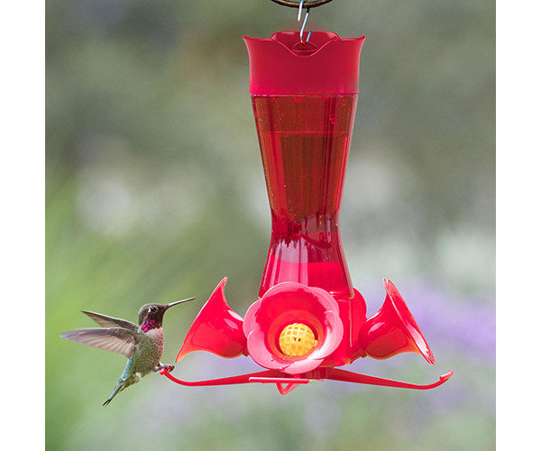Pinch Waist Red Glass Hummingbird Feeder