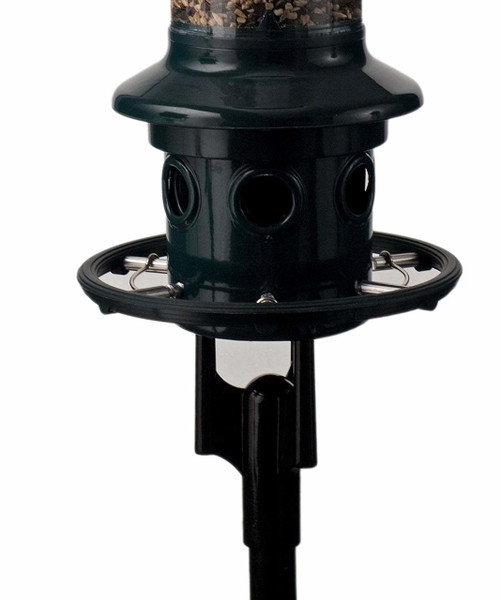 Squirrel Buster Plus Pole Adapter Kit