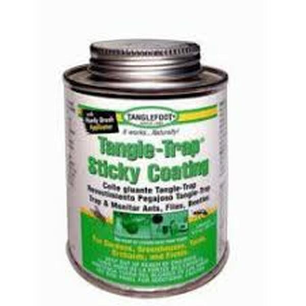 Tangle-Trap Brushable Insect Paste, 8oz.