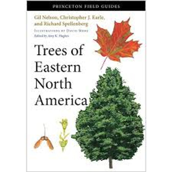 Trees of Eastern North America (Princeton Field Guide)