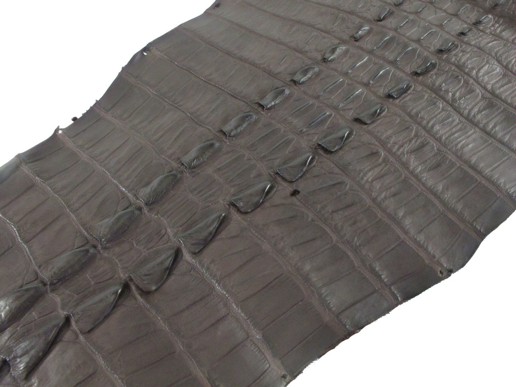 Genuine Crocodile Tail Skin Hide Matte Brown Grade A [CRSTFBR01M-C]