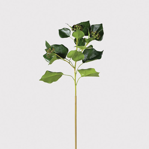 faux natural ivy leaf with seed heads