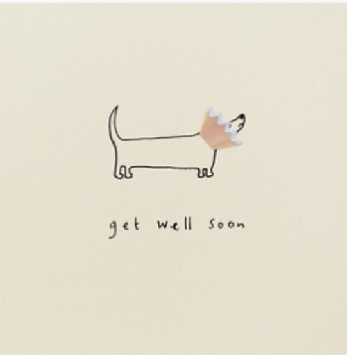 Get Well Dog Cone Card