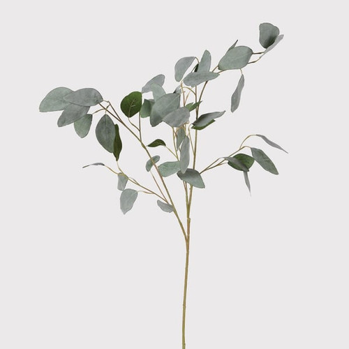 silver eucalyptus spray