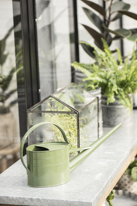 nordic glass and metal greenhouse, mini greenhouse