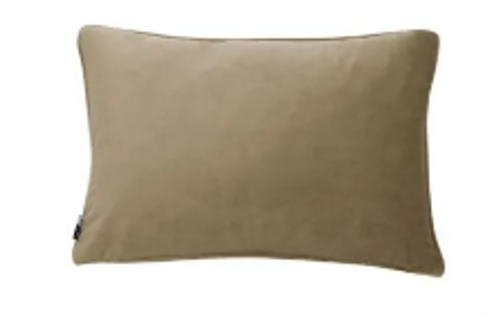 Luxe Rectangle Champagne Cushion
