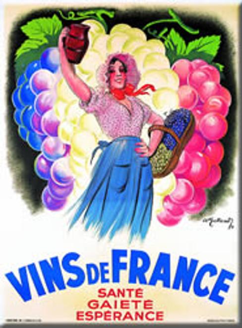 Vins de France Magnet