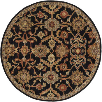 Surya Middleton AWMD-2073 Rug Alt View