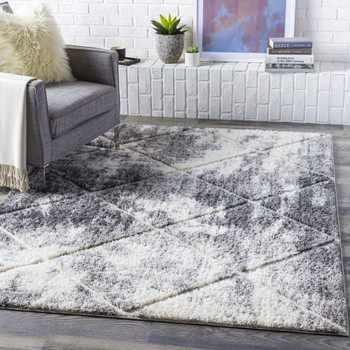 Surya Elenor ENR-2319 Rug Alternative View 1
