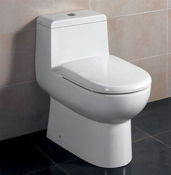 EAGO TB351 DUAL FLUSH ONE PIECE ECO-FRIENDLY HIGH EFFICIENCY LOW FLUSH CERAMIC TOILET