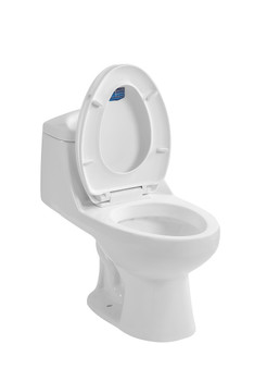One piece elongated toilet with soft close seat, Dual Flush in White CT-8008-WH