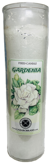 Gardenia Dressed & Blessed 7 Day Prayer Candle For Purity Clarity & Hope