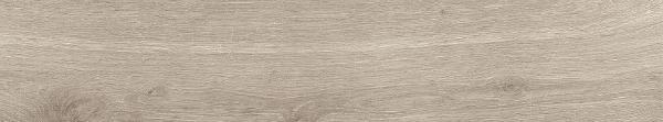 Rigel InOut Grey Porcelain Tile 6x36 - CASE