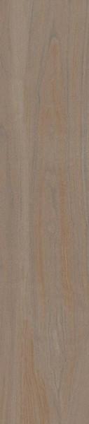 Bengala InOut Walnut Porcelain Tile 9x47 - CASE