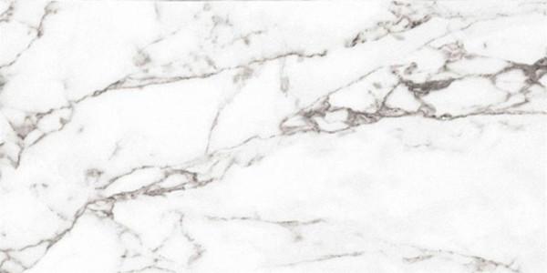 Venato Blanco Polished Porcelain Tile 12x24 - CASE