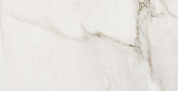 Fossile Polished Porcelain Tile 12x24 - CASE