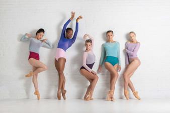 Ballet Rosa Natasha Mesh Top